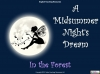 A Midsummer Night's Dream - KS3 Teaching Resources (slide 39/138)