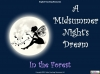 A Midsummer Night's Dream - Year 6 Teaching Resources (slide 39/131)