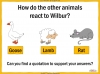 Charlotte's Web Teaching Resources (slide 45/147)