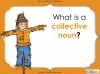 Collective Nouns (slide 3/32)