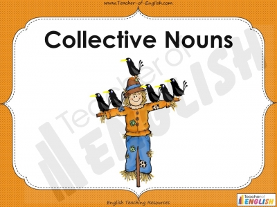 Collective Nouns