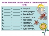 Compound Words (slide 4/10)