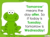 Days of the Week - Year 1 Teaching Resources (slide 33/60)