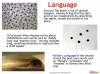 Death of a Naturalist - GCSE (9-1) Teaching Resources (slide 13/20)