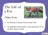 Fantastic Mr Fox by Roald Dahl (slide 59/85)
