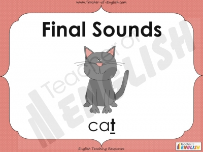 Final Sounds Teaching Resources