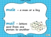 Homophones - Year 3 and 4 Teaching Resources (slide 10/19)