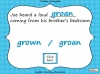 Homophones - Year 3 and 4 Teaching Resources (slide 12/19)