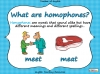 Homophones - Year 3 and 4 Teaching Resources (slide 2/19)