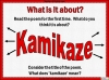 Kamikaze by Beatrice Garland (slide 5/38)