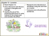 Matilda Teaching Resources (slide 154/221)