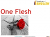 One Flesh (Jennings) Teaching Resources (slide 3/37)