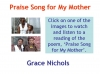 Praise Song for My Mother Teaching Resources (slide 13/40)