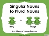 Singular Nouns to Plural Nouns  - Year 1 Teaching Resources (slide 1/67)