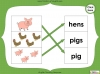 Singular Nouns to Plural Nouns  - Year 1 Teaching Resources (slide 15/67)