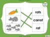 Singular Nouns to Plural Nouns  - Year 1 Teaching Resources (slide 18/67)