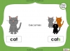 Singular Nouns to Plural Nouns  - Year 1 Teaching Resources (slide 25/67)