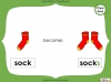 Singular Nouns to Plural Nouns  - Year 1 Teaching Resources (slide 27/67)