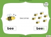 Singular Nouns to Plural Nouns  - Year 1 Teaching Resources (slide 30/67)