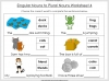 Singular Nouns to Plural Nouns  - Year 1 Teaching Resources (slide 32/67)