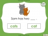 Singular Nouns to Plural Nouns  - Year 1 Teaching Resources (slide 35/67)