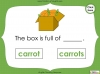 Singular Nouns to Plural Nouns  - Year 1 Teaching Resources (slide 36/67)