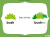 Singular Nouns to Plural Nouns  - Year 1 Teaching Resources (slide 44/67)