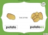 Singular Nouns to Plural Nouns  - Year 1 Teaching Resources (slide 52/67)