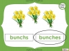 Singular Nouns to Plural Nouns  - Year 1 Teaching Resources (slide 59/67)