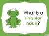 Singular Nouns to Plural Nouns  - Year 1 Teaching Resources (slide 6/67)