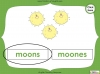 Singular Nouns to Plural Nouns  - Year 1 Teaching Resources (slide 61/67)