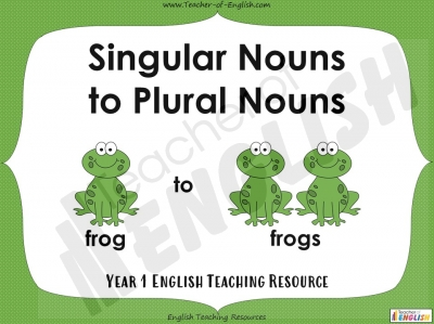 Singular Nouns to Plural Nouns  - Year 1 Teaching Resources