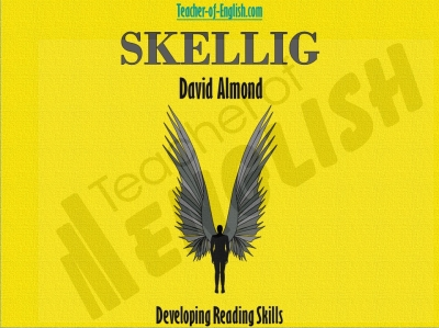 Skellig - Free Resource
