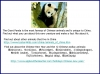 Stories from other Cultures Teaching Resources (slide 26/53)