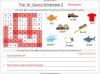The 'sh' Sound - EYFS Teaching Resources (slide 49/52)