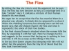 The Flea (Donne) Teaching Resources (slide 17/39)