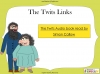 The Twits by Roald Dahl Teaching Resources (slide 87/88)
