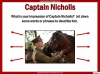 War Horse by Michael Morpurgo Teaching Resources (slide 47/138)