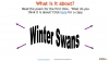 Winter Swans by Owen Sheers (slide 5/18)
