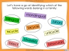 Word Families - Year 3 and 4 Teaching Resources (slide 8/17)